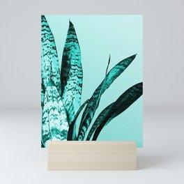 Sansevieria Snake Plant turquoise - Trifasciata botanical Mini Art Print