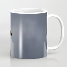 Storm Chaser - Bird flying in Sky Coffee Mug
