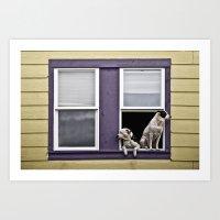 Window Watchers Art Print