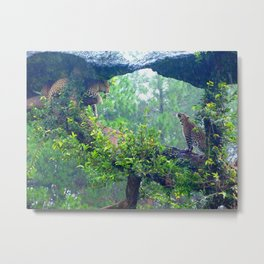 The Morning Light Metal Print
