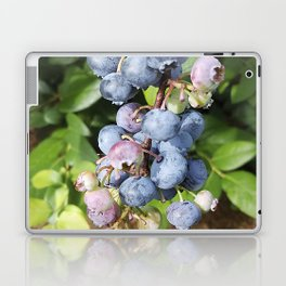 Ready to pick blueberries? Laptop & iPad Skin