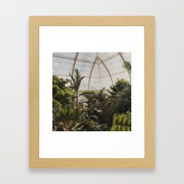 Botanical Garden Framed Art Print