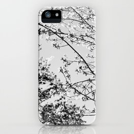 Silver Spring iPhone Case