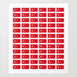 flag of turkey -turkey,Turkish,Türkiye,Turks,Kurds,ottoman,istanbul,constantinople. Art Print
