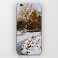 The Old Mill Stream in Winter iPhone & iPod Skin