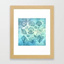 Blue Seashells Framed Art Print