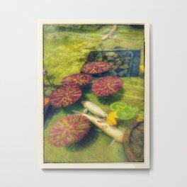 Coy Pond Metal Print