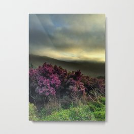 Pink Flowers with Fog Metal Print