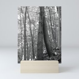 Old love, black and white photography trees Mini Art Print