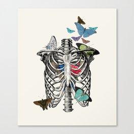 Anatomy 101 - The Thorax Canvas Print