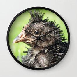 Strupp fun little chicken chick Wall Clock