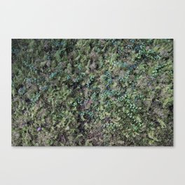 Deep into the Forest (moss, green grass) Canvas Print