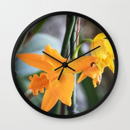 Longwood Gardens Orchid Extravaganza 71 Wall Clock