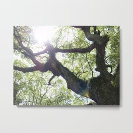 Earth beat Metal Print