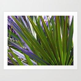 Saw Palmetto Tropicale Art Print