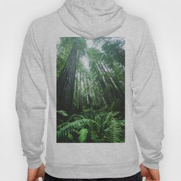 Redwood National Park- Pacific Northwest Nature Photography Hoody