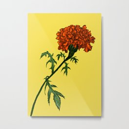 French Marigold Flower Vibrant Ink Drawing Metal Print