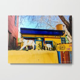 Cats in Buenos Aires #2 Metal Print