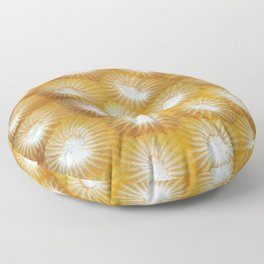 Hard Coral Polyp Pattern Floor Pillow