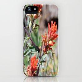 road trip, orange/red, flower, high altitude iPhone Case