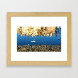Reflector Swan I Framed Art Print