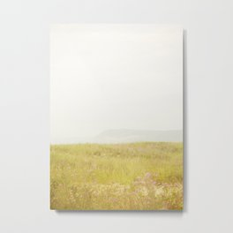 Wild Flowers Lake Michigan South Manitou Metal Print