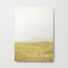 Wild Flowers Lake Michigan South Manitou Metal Print