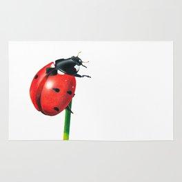 Ladybug | Colored pencil drawing Rug