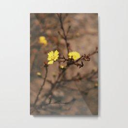 Blooming Yellow Flowers Metal Print
