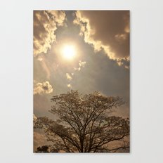 nature..sun..clouds..trees Canvas Print