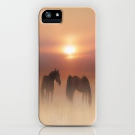 Horses in a misty dawn iPhone Case