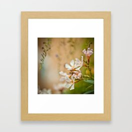 Flowers2 Framed Art Print