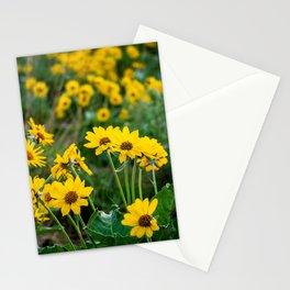 No. 5 Okanagan Sunflowers at Dawn Stationery Cards