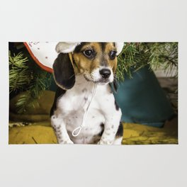 Beagle Puppy in a Santa Hat on a Toy Sled underneath a Christmas Tree Rug