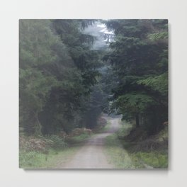 Path between the Spruce Metal Print