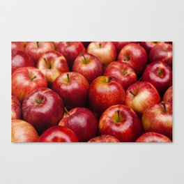 food apple Canvas Print