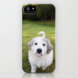 Great Pyrenees Puppy Derp iPhone Case