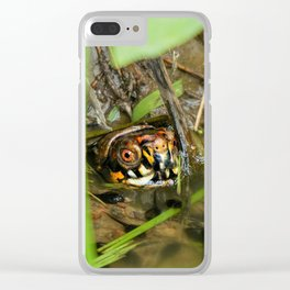 Box Turtle and Tadpoles Clear iPhone Case