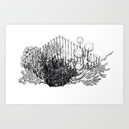 sea plants Art Print