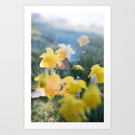 Daffodils at Home Double Exposure Art Print