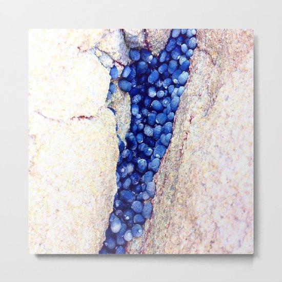 Blue Shells Metal Print