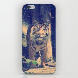 The One Eyed Sumatran Tiger. iPhone Skin