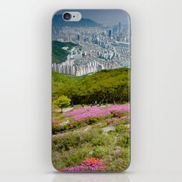 Summer Mountain View in Busan iPhone Skin