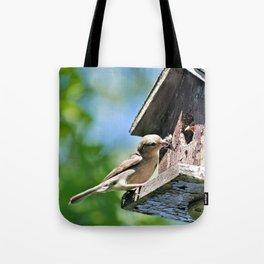 Tasty Bite for Baby Bird Tote Bag