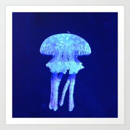 Blue jellyfish Art Print