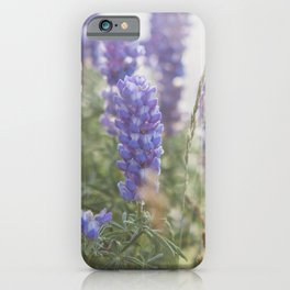 Lupine Morning - Flower Photography iPhone Case