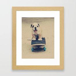 English Bulldog Rollin' Framed Art Print