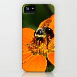 Bumblebee Hard At Work iPhone Case