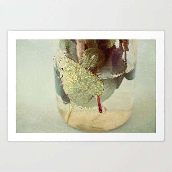 leaves underwater Art Print
