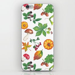 Autumn Forest Colours iPhone Skin